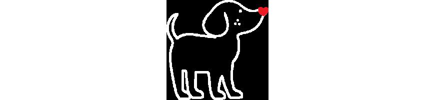 Friandises pour chien | PetCooking